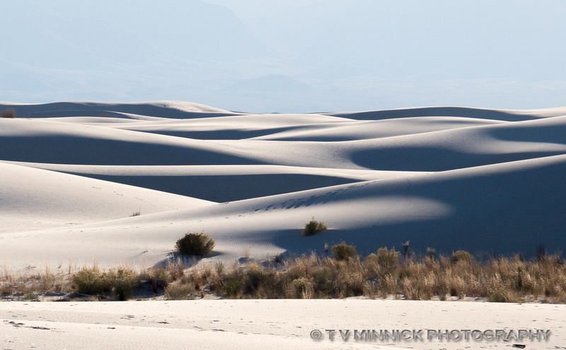 Light and Shadow on the Dunes